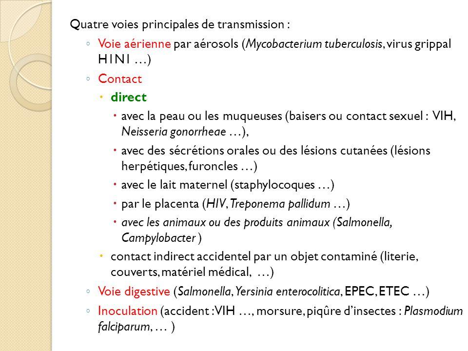 Quatre voies principales de transmission : ◦ Voie aérienne par aérosols (Mycobacterium tuberculosis, virus grippal H1N1 …) ◦ Contact  direct  avec la peau ou les muqueuses (baisers ou contact sexuel : VIH, Neisseria gonorrheae …),  avec des sécrétions orales ou des lésions cutanées (lésions herpétiques, furoncles …)  avec le lait maternel (staphylocoques …)  par le placenta (HIV, Treponema pallidum …)  avec les animaux ou des produits animaux (Salmonella, Campylobacter )  contact indirect accidentel par un objet contaminé (literie, couverts, matériel médical, …) ◦ Voie digestive (Salmonella, Yersinia enterocolitica, EPEC, ETEC …) ◦ Inoculation (accident : VIH …, morsure, piqûre d'insectes : Plasmodium falciparum, … )