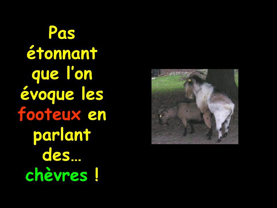 Pas étonnant que l'on évoque les footeux en parlant des… chèvres !