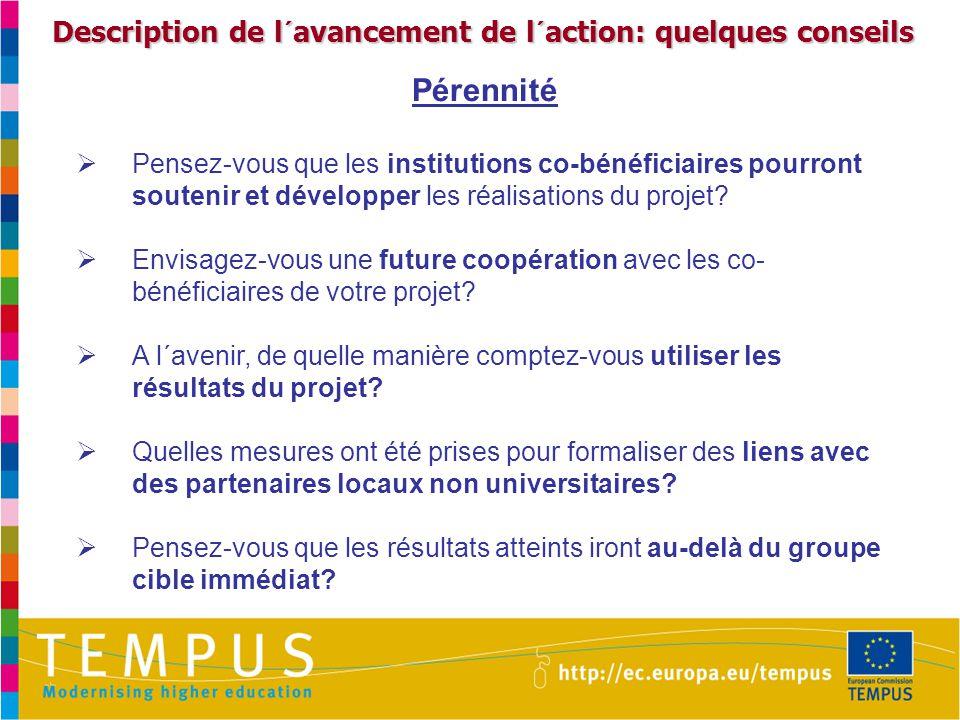 Description de l´avancement de l´action: quelques conseils Pérennité  Pensez-vous que les institutions co-bénéficiaires pourront soutenir et développer les réalisations du projet.