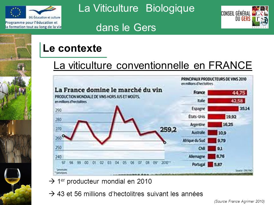 La Viticulture Biologique dans le Gers  774 000 ha de vignes en production en 2010 (3% de la SAU)  490 000 exploitations viticoles  Rendements moyens compris entre 44 et 58 hl/ha (Source France Agrimer 2010) La viticulture conventionnelle en FRANCE Le contexte