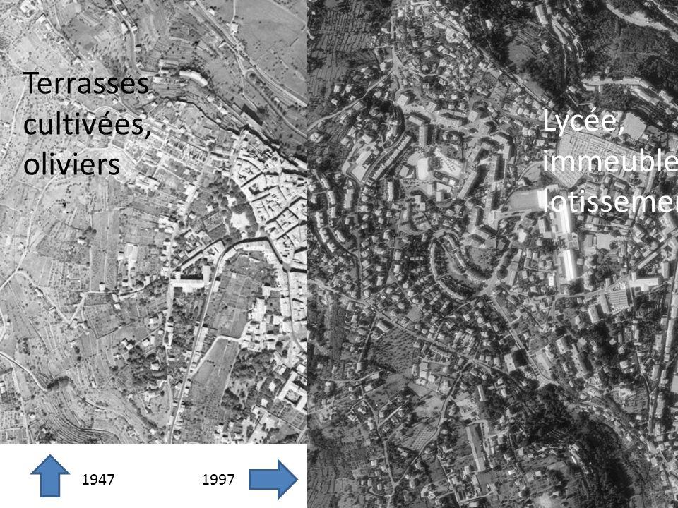 1947 1997 Terrasses cultivées, oliviers Lycée, immeubles lotissements