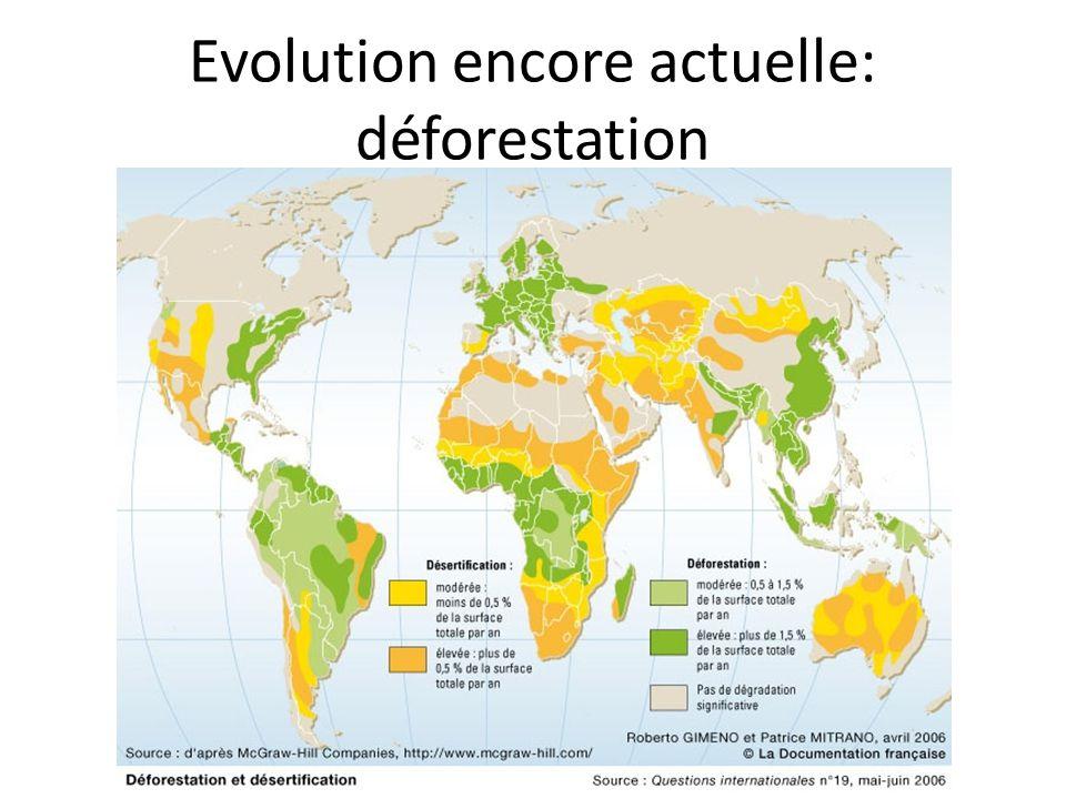 Evolution encore actuelle: déforestation