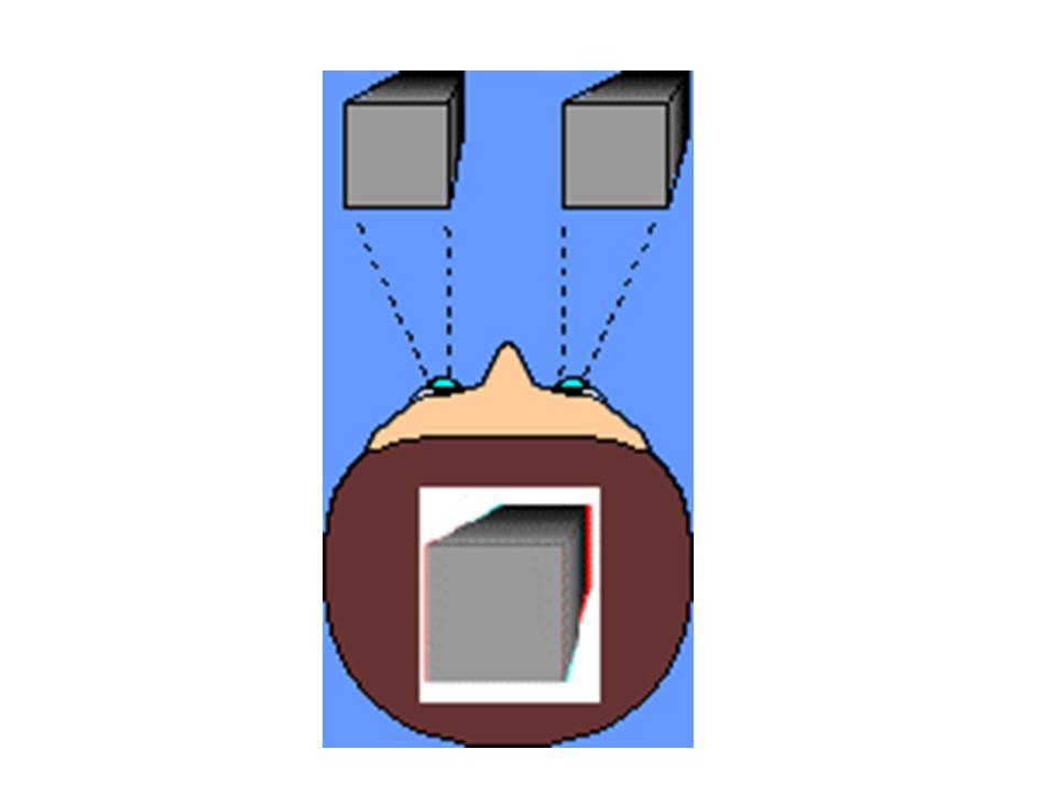 Bref historique de la stéréoscopie Le principe a été décrit pour la première fois en 1838 par le physicien anglais Ch.Wheatstone.