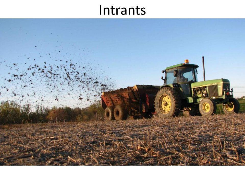 Intrants