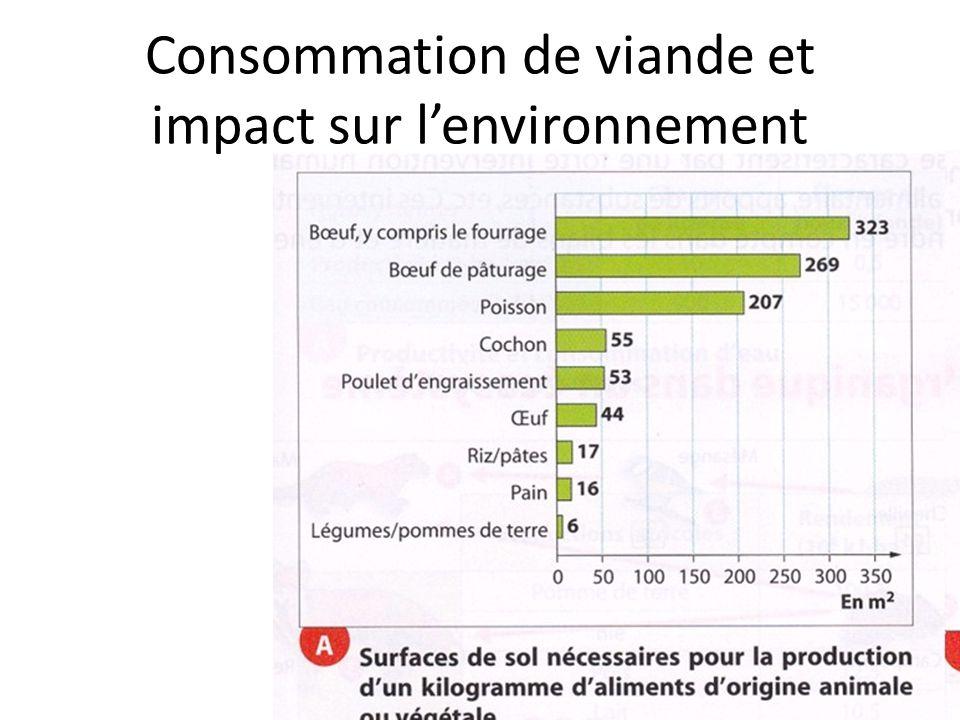 Consommation de viande et impact sur l'environnement