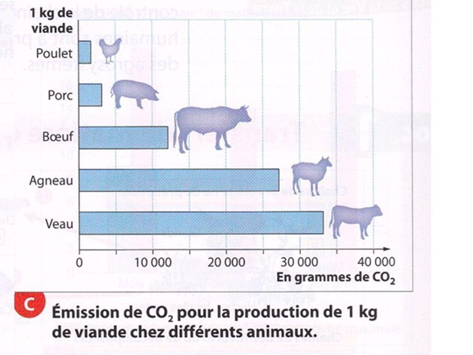 Emission CO2 liée à viande