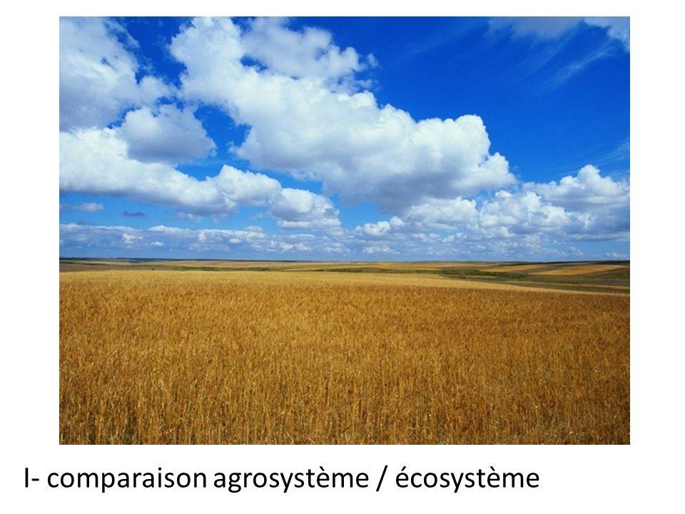 Agrosystème I- comparaison agrosystème / écosystème