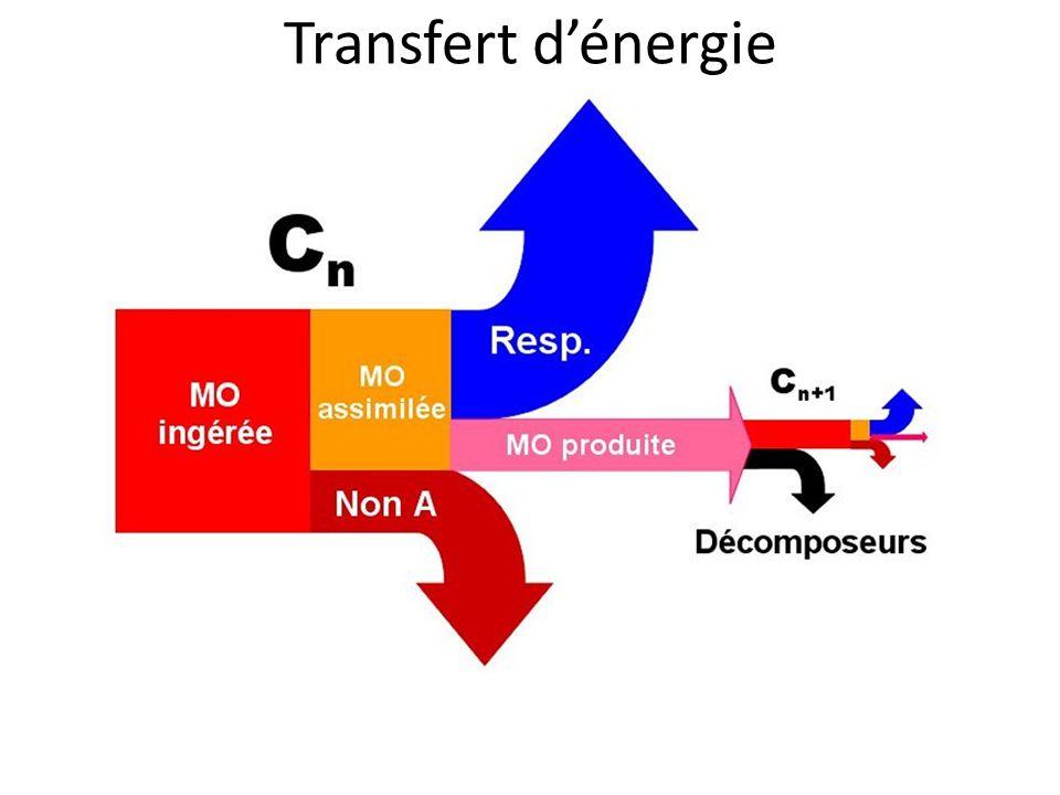 Transfert d'énergie