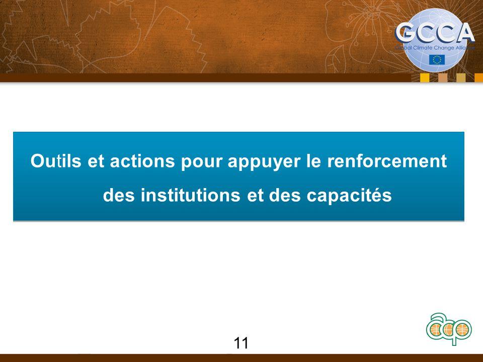 Outils et actions pour appuyer le renforcement des institutions et des capacités 11