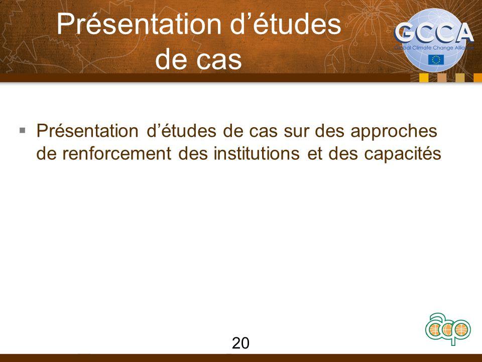Présentation d'études de cas  Présentation d'études de cas sur des approches de renforcement des institutions et des capacités 20