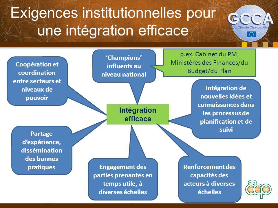 Exigences institutionnelles pour une intégration efficace Intégration efficace Coopération et coordination entre secteurs et niveaux de pouvoir 'Champ