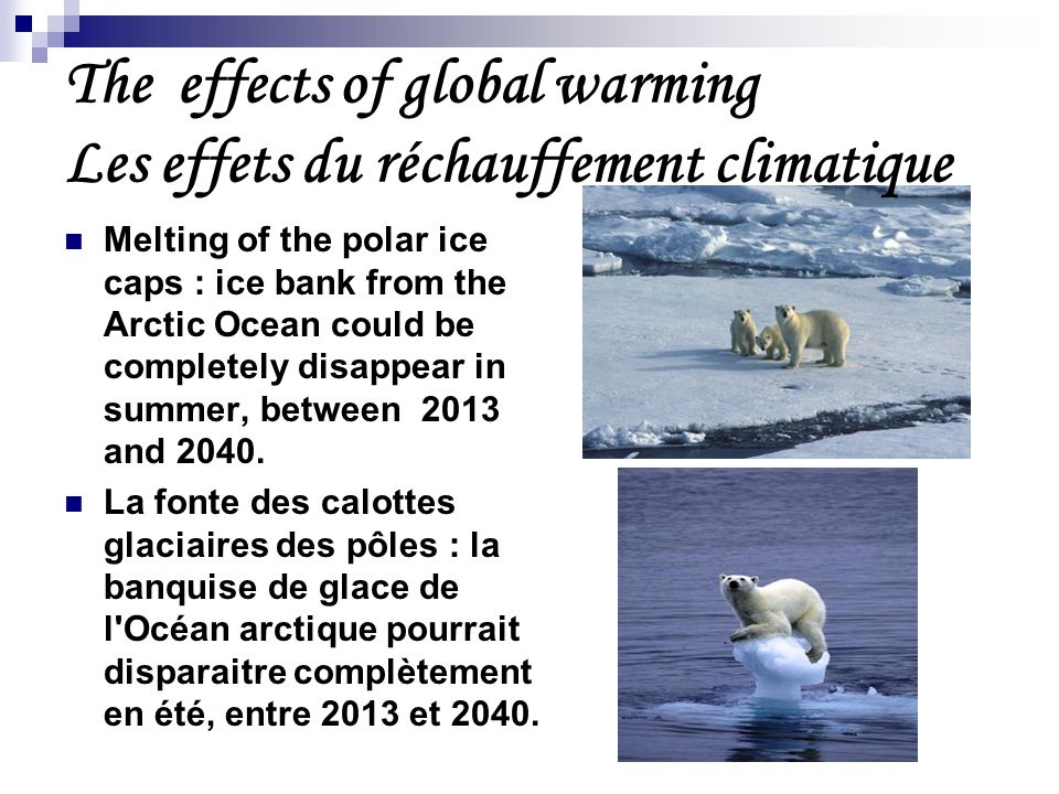 Melting of the polar ice caps : ice bank from the Arctic Ocean could be completely disappear in summer, between 2013 and 2040.
