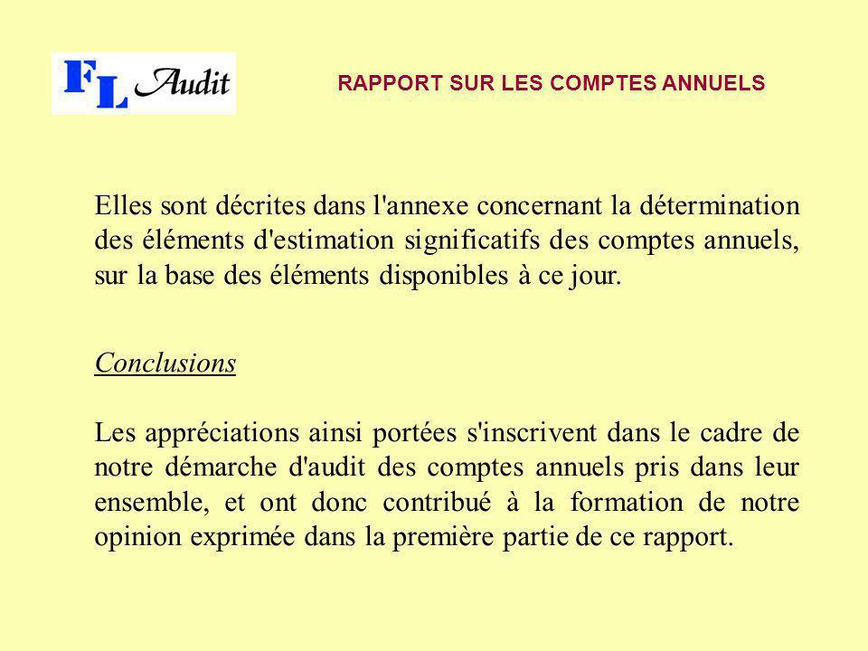 Elles sont décrites dans l'annexe concernant la détermination des éléments d'estimation significatifs des comptes annuels, sur la base des éléments di