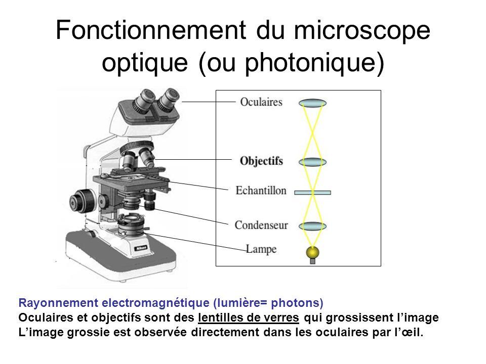 Fonctionnement du microscope optique (ou photonique) Rayonnement electromagnétique (lumière= photons) Oculaires et objectifs sont des lentilles de ver