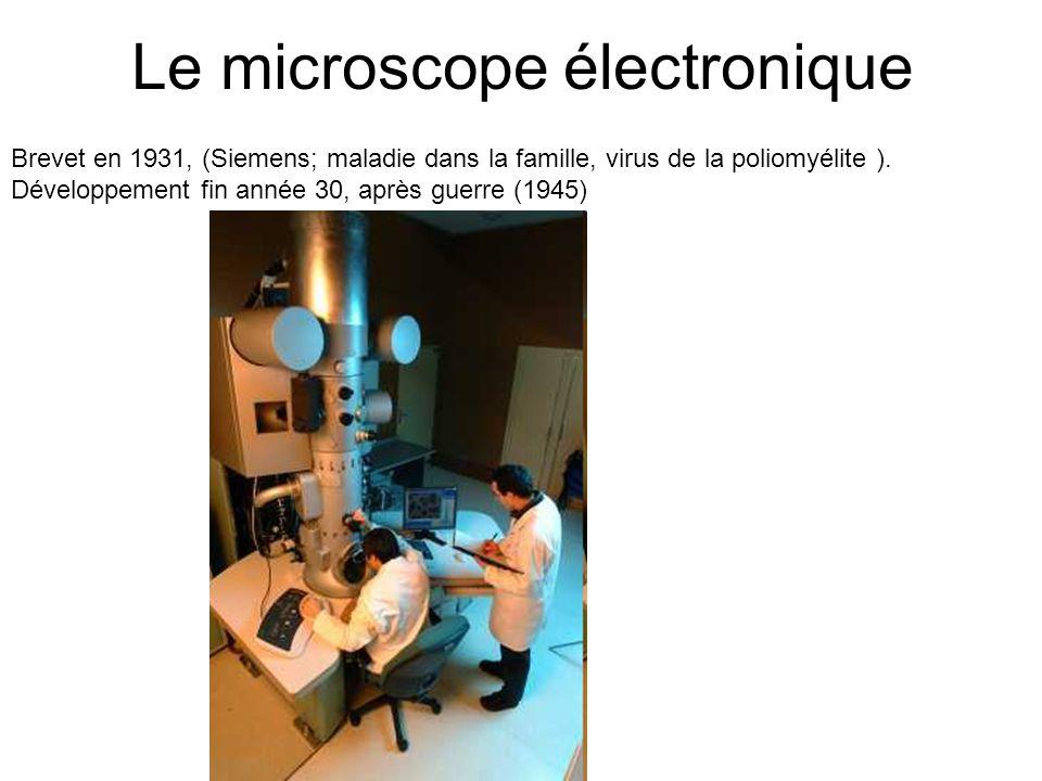 Le microscope électronique Brevet en 1931, (Siemens; maladie dans la famille, virus de la poliomyélite ). Développement fin année 30, après guerre (19