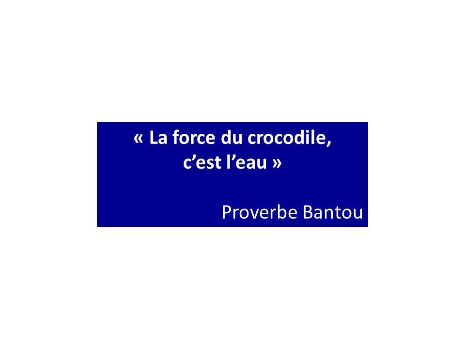 « La force du crocodile, c'est l'eau » Proverbe Bantou