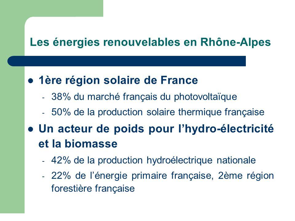 Un important réseau d'acteurs économiques et scientifiques Plus de 25% des entreprises du secteur implantées en Rhône-Alpes Pôle de compétitivité TENERRDIS, Cluster Eco- énergies, Cluster de recherche Énergies renouvelables Plus de 2500 chercheurs dans des laboratoires localisés en Rhône-Alpes: CEA, CNRS, CSTB, IFP, INES (Institut National de l'Énergie Solaire)… Un réseau associatif important
