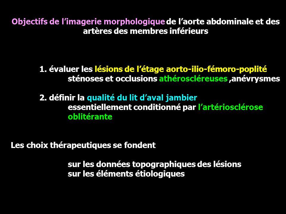 Objectifs de l'imagerie morphologique de l'aorte abdominale et des artères des membres inférieurs 1.