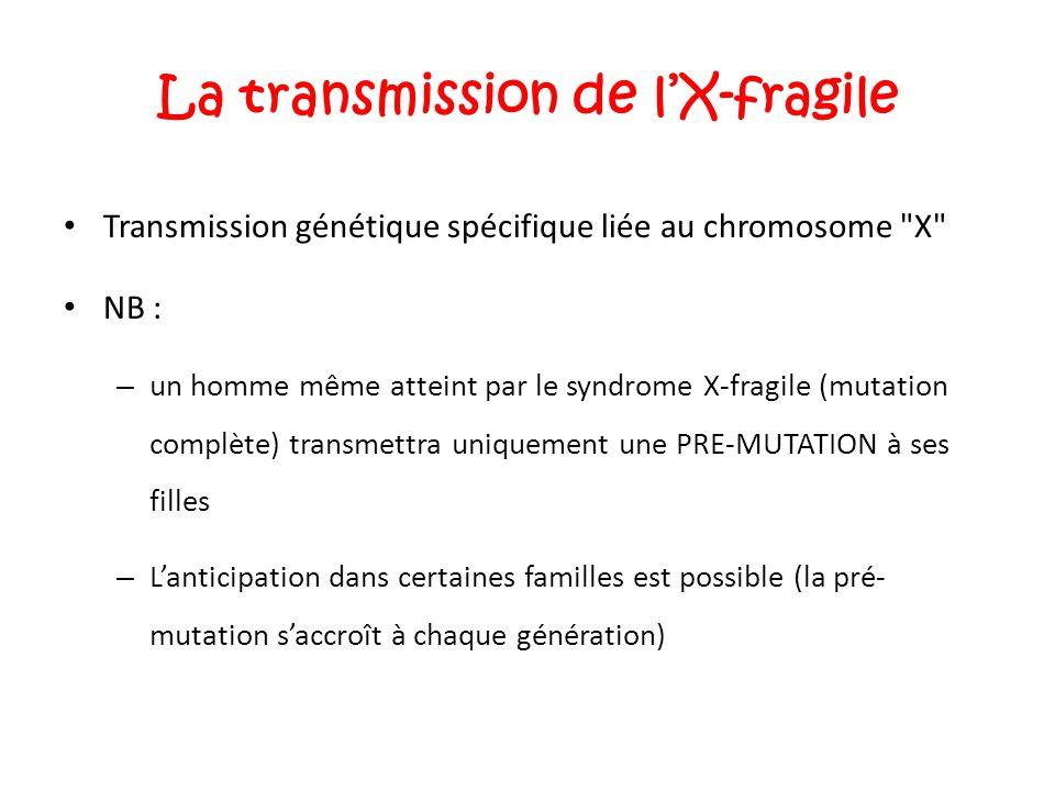 La transmission de l'X-fragile Transmission génétique spécifique liée au chromosome