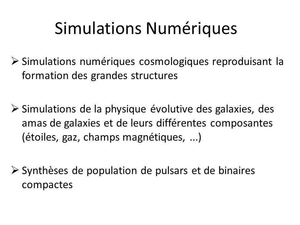 Simulations Numériques  Simulations numériques cosmologiques reproduisant la formation des grandes structures  Simulations de la physique évolutive des galaxies, des amas de galaxies et de leurs différentes composantes (étoiles, gaz, champs magnétiques,...)  Synthèses de population de pulsars et de binaires compactes
