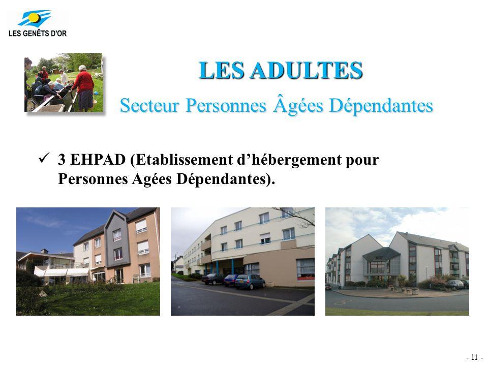 - 11 - LES ADULTES Secteur Personnes Âgées Dépendantes 3 EHPAD (Etablissement d'hébergement pour Personnes Agées Dépendantes).
