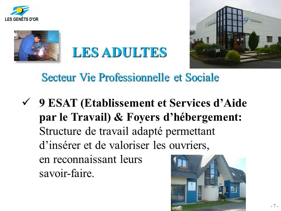 - 7 - LES ADULTES Secteur Vie Professionnelle et Sociale 9 ESAT (Etablissement et Services d'Aide par le Travail) & Foyers d'hébergement: Structure de travail adapté permettant d'insérer et de valoriser les ouvriers, en reconnaissant leurs savoir-faire.