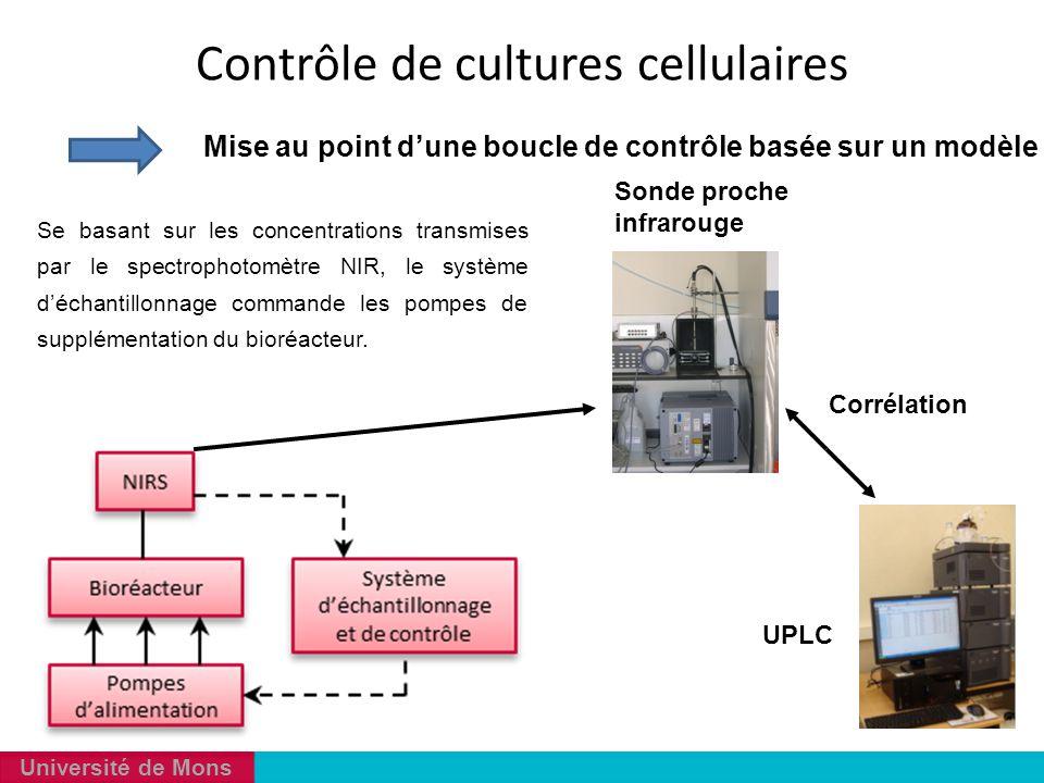 Université de Mons Mise au point d'une boucle de contrôle basée sur un modèle Se basant sur les concentrations transmises par le spectrophotomètre NIR