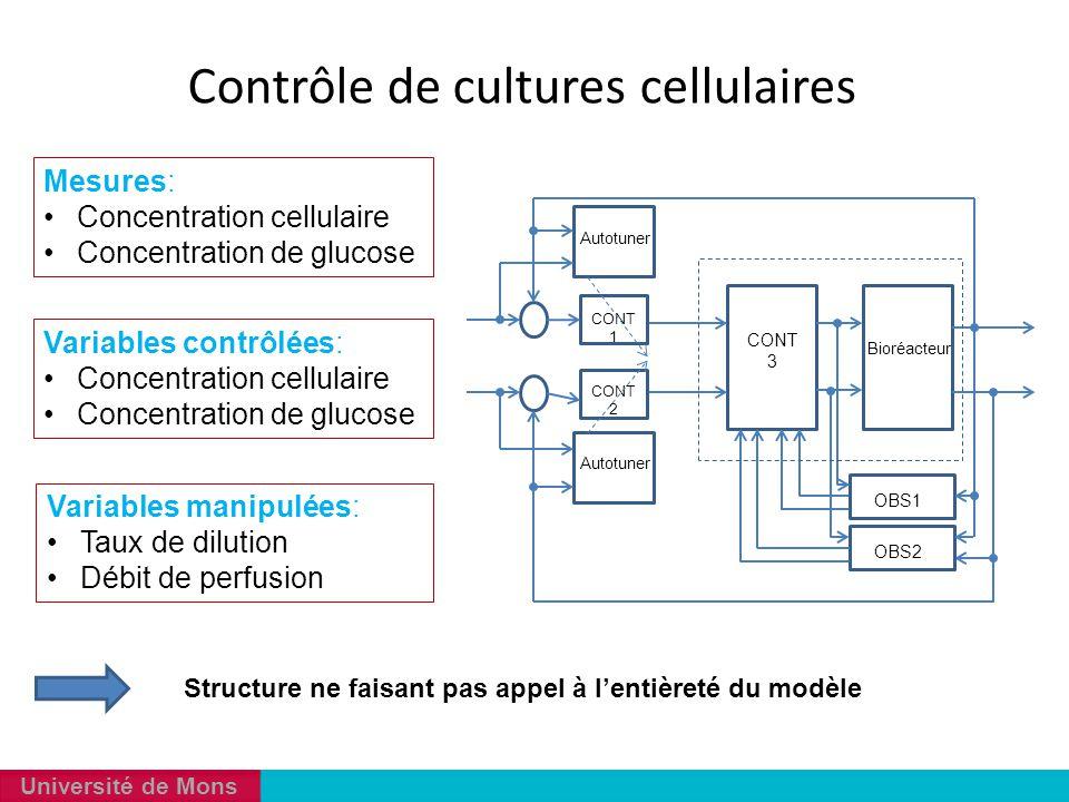 Université de Mons Mesures: Concentration cellulaire Concentration de glucose Variables manipulées: Taux de dilution Débit de perfusion Variables cont
