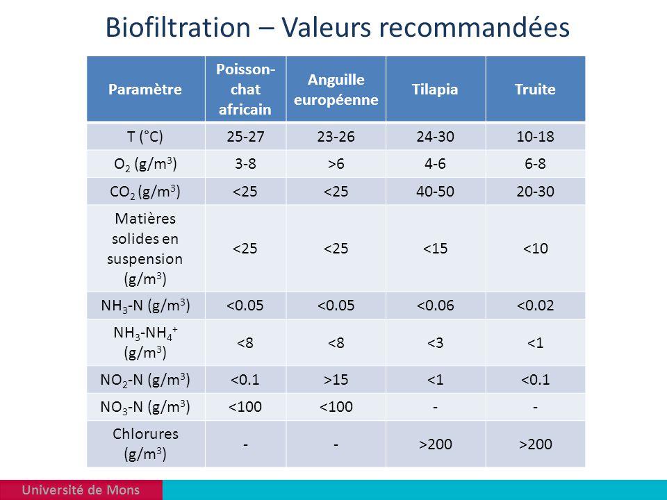 Université de Mons Biofiltration – Valeurs recommandées Paramètre Poisson- chat africain Anguille européenne TilapiaTruite T (°C)25-2723-2624-3010-18