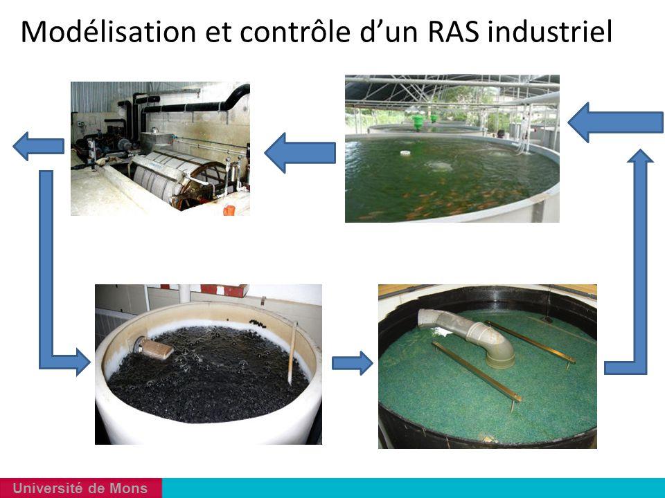Université de Mons Modélisation et contrôle d'un RAS industriel