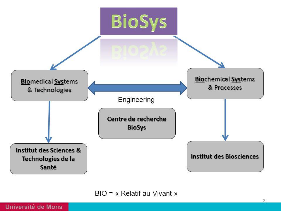 Université de Mons 2 Biomedical Systems & Technologies Biochemical Systems & Processes Institut des Sciences & Technologies de la Santé Institut des B