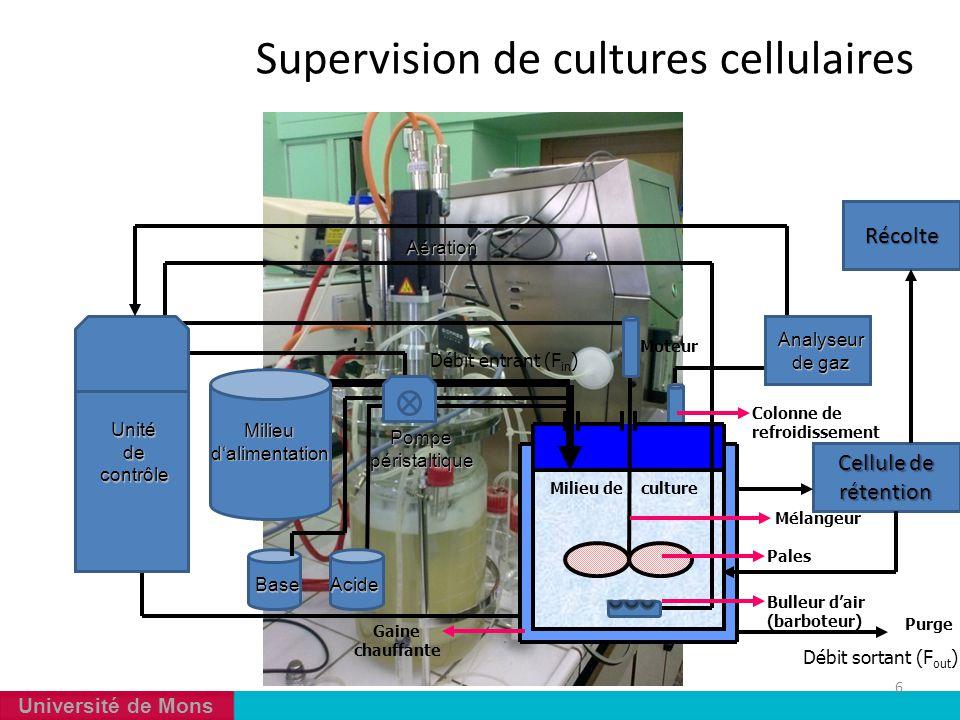 Université de Mons Supervision de cultures cellulaires 6 Milieud'alimentation Débit entrant (F in ) Milieu de culture Mélangeur Pales Unitédecontrôle