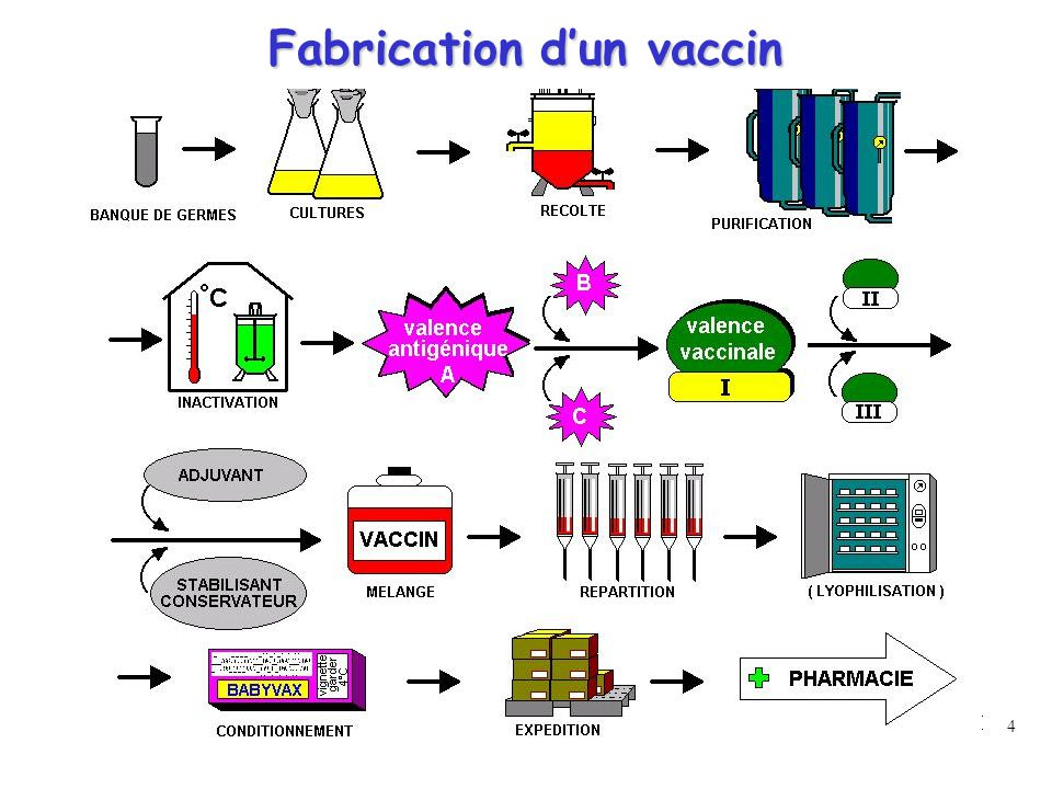 4 Fabrication d'un vaccin