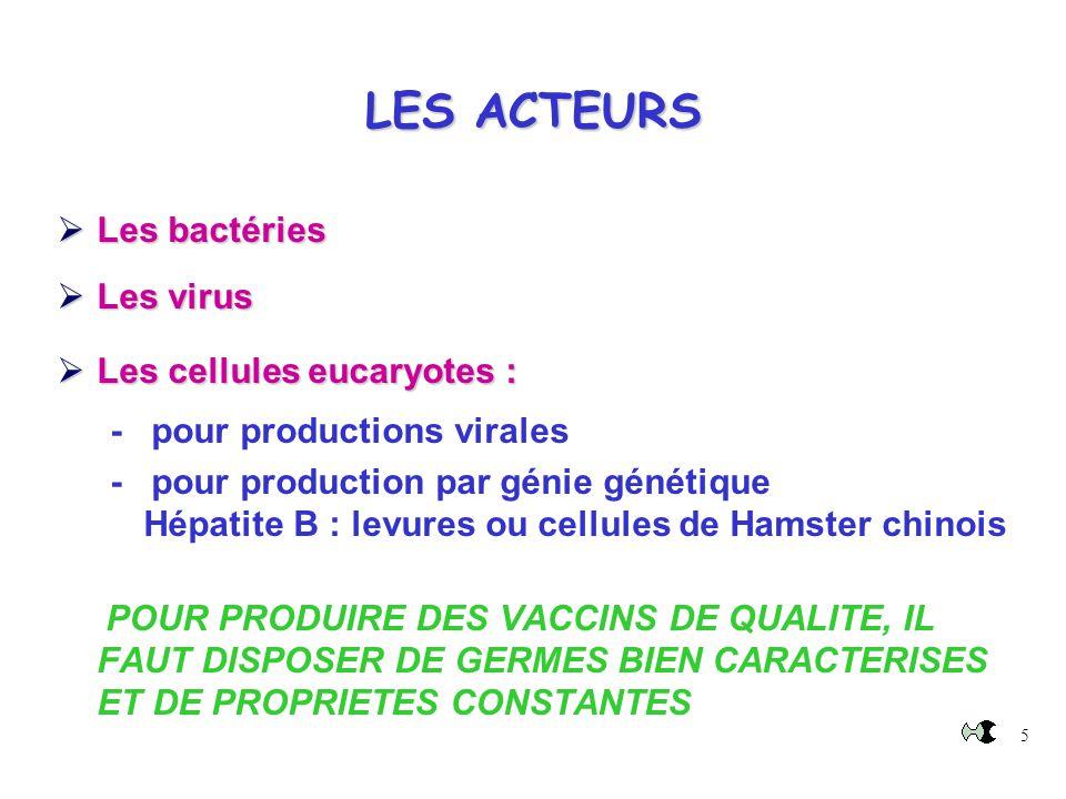 5 LES ACTEURS  Les bactéries  Les virus  Les cellules eucaryotes:  Les cellules eucaryotes : - pour productions virales - pour production par géni