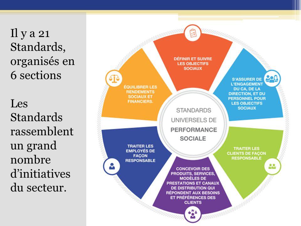 Il y a 21 Standards, organisés en 6 sections Les Standards rassemblent un grand nombre d'initiatives du secteur.