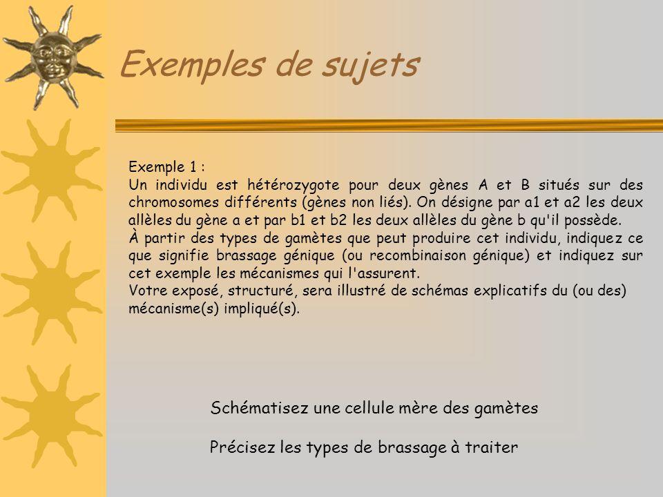 Exemples de sujets Exemple 1 : Un individu est hétérozygote pour deux gènes A et B situés sur des chromosomes différents (gènes non liés). On désigne