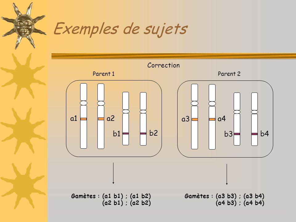 Exemples de sujets Correction a1 b1 a2 b2 a3 b3 a4 b4 Gamètes : (a1 b1) ; (a1 b2) (a2 b1) ; (a2 b2) Gamètes : (a3 b3) ; (a3 b4) (a4 b3) ; (a4 b4) Pare