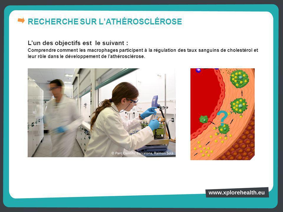 RECHERCHE SUR L'ATHÉROSCLÉROSE L'un des objectifs est le suivant : Comprendre comment les macrophages participent à la régulation des taux sanguins de