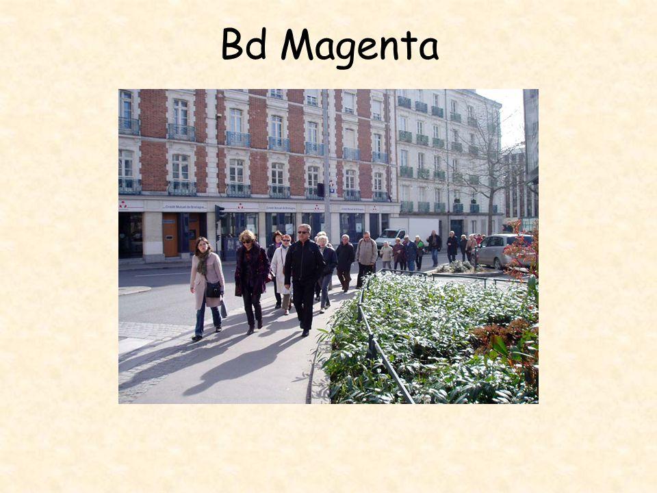 Bd Magenta