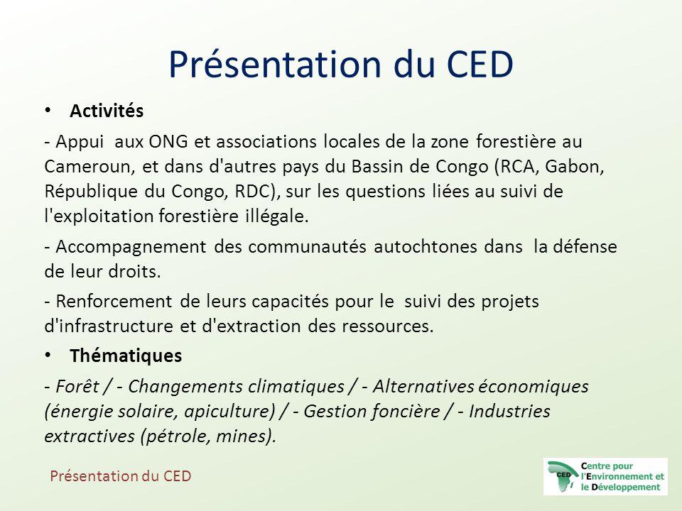 Activités - Appui aux ONG et associations locales de la zone forestière au Cameroun, et dans d'autres pays du Bassin de Congo (RCA, Gabon, République