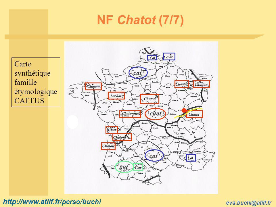 http://www.atilf.fr eva.buchi@atilf.fr http://www.atilf.fr/perso/buchi NF Chatot (7/7) Carte synthétique famille étymologique CATTUS
