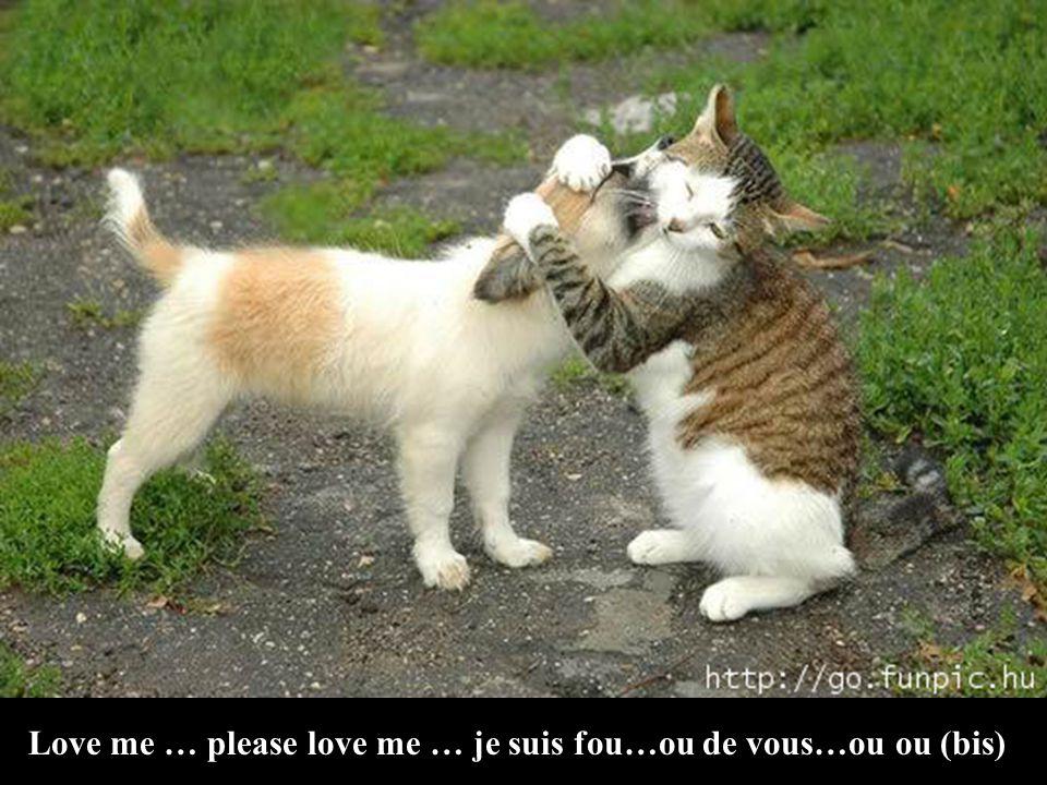 Love me … please love me … je suis fou…ou de vous…ou ou (bis)