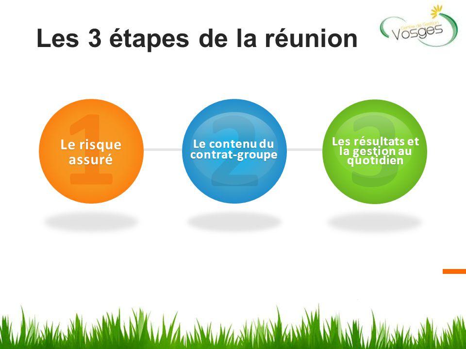 Les 3 étapes de la réunion 1 Le risque assuré 2 Le contenu du contrat-groupe 3 Les résultats et la gestion au quotidien