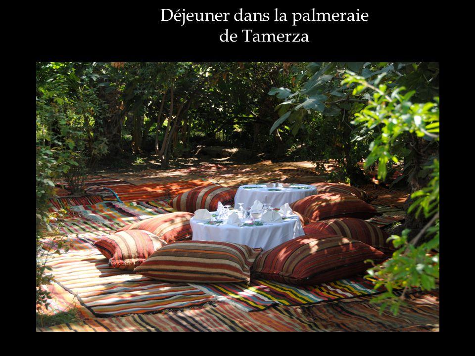 Déjeuner dans la palmeraie de Tamerza