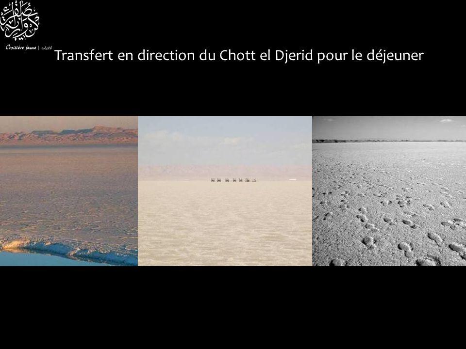 Transfert en direction du Chott el Djerid pour le déjeuner