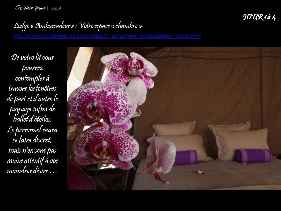 Lodge « Ambassadeur » : Votre espace « chambre » http://www.croisierejaune.com/video/31_ephemere_ambassadeur_camp.html JOUR 1 à 4 De votre lit vous pourrez contempler à travers les fenêtres de part et d autre le paysage infini de ballet d étoiles.