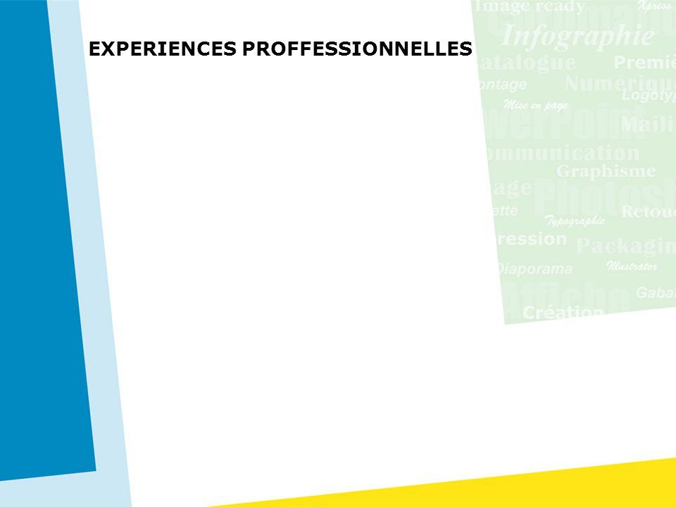 EXPERIENCES PROFFESSIONNELLES 2006 IXCKO JEAN'S – Vente de Jean –Réalisation d'un catalogue et suivi de son évolution jusqu'à l'impression. 2005 FATEX