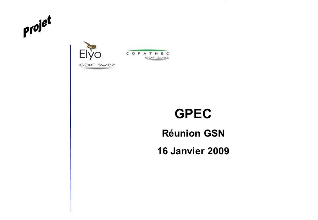 GSN GPEC / 16 Janvier 2009 1 GPEC Réunion GSN 16 Janvier 2009