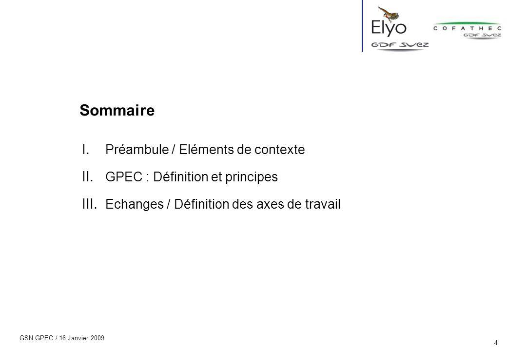 GSN GPEC / 16 Janvier 2009 4 I. Préambule / Eléments de contexte II. GPEC : Définition et principes III. Echanges / Définition des axes de travail Som