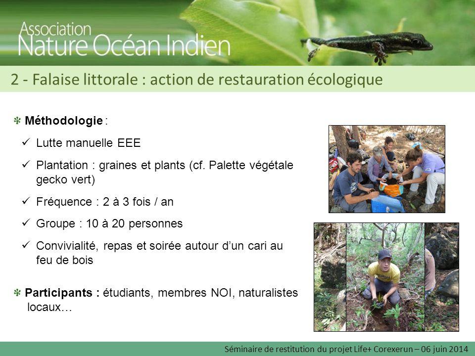 Méthodologie : Lutte manuelle EEE Plantation : graines et plants (cf. Palette végétale gecko vert) Fréquence : 2 à 3 fois / an Groupe : 10 à 20 person
